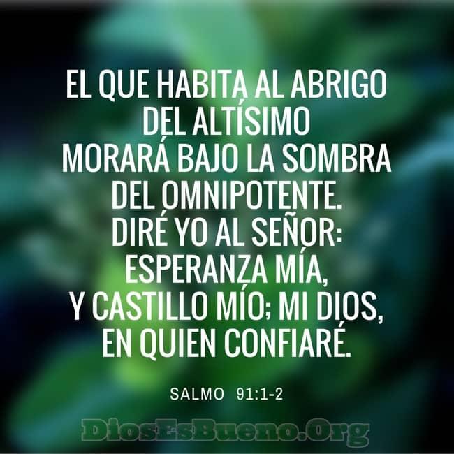 Salmo 91 Oración Guiada El Que Habita Al Abrigo Del Altísimo