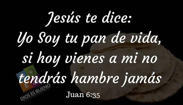 jesus es el pan de vida que descendio del cielo