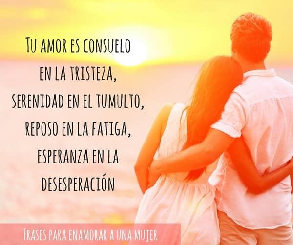 Imagen Con La Frase Tu Amor Es Consuelo En La Tristeza