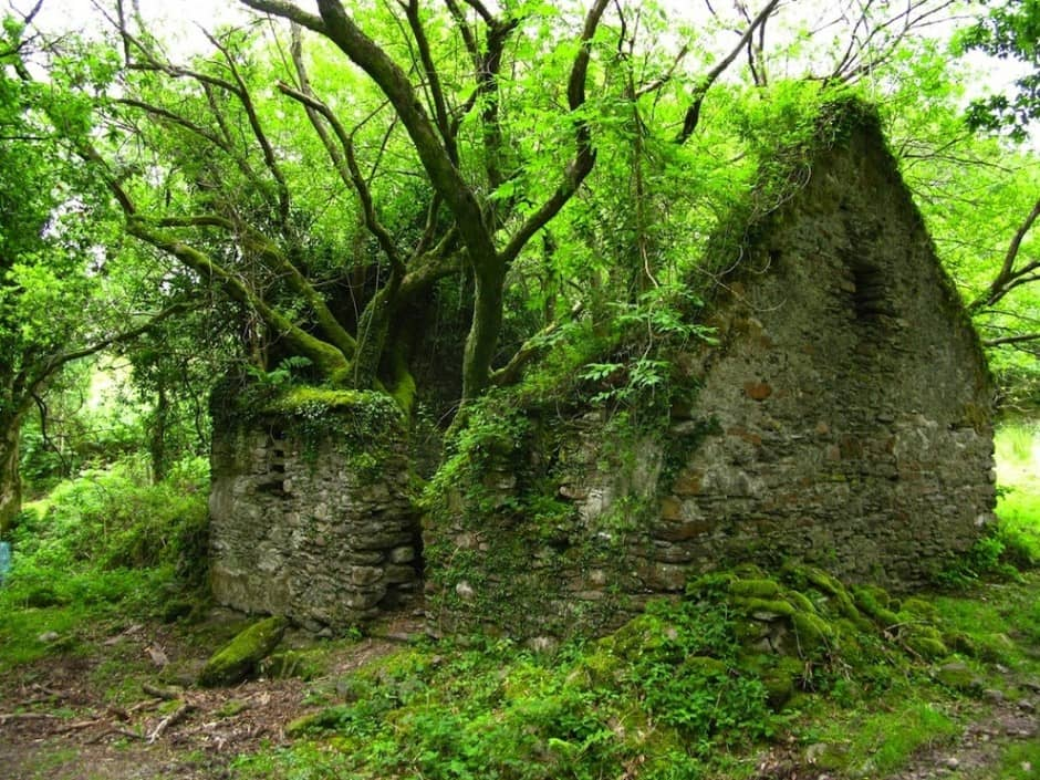 kerry way walking path, ireland