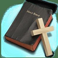 bible reading book