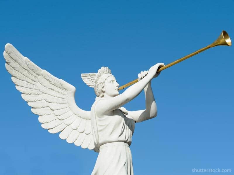 Angel Horn