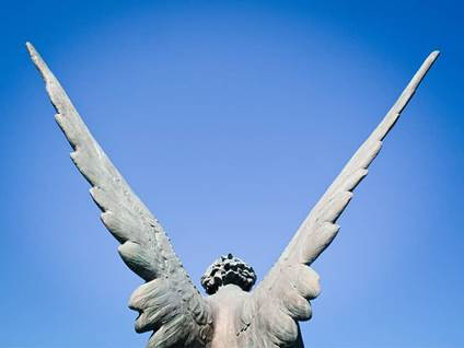 Angel statue wings