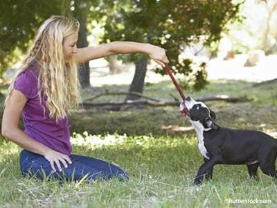 people woman dog