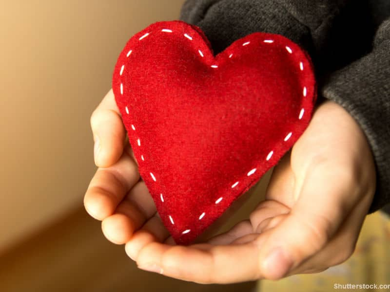 person holding heart in hand