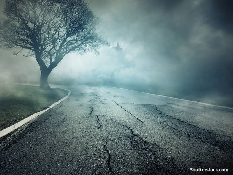 depression-road-fog-tree