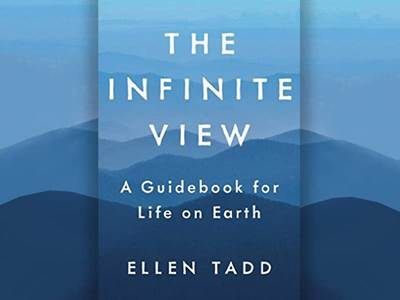 The Infinite View Book Cover