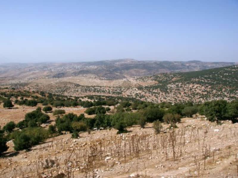 Tel Mar Elias