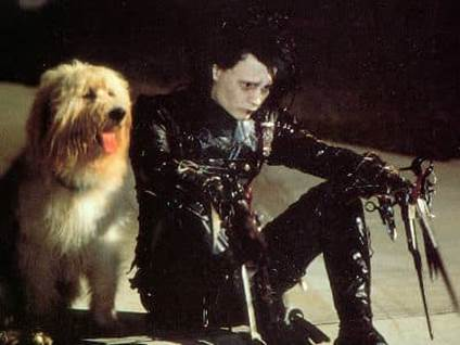 Edward and Dog