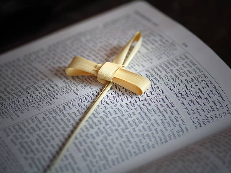 christian-catholic-bible-lent-palm-cross
