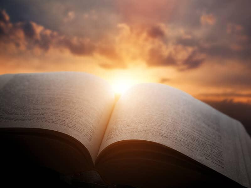 bible in sun