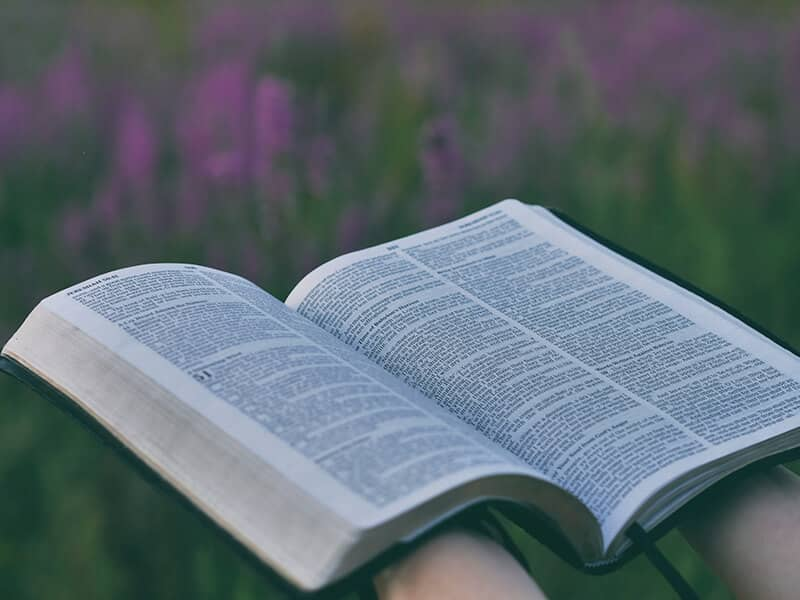 Bible in nature