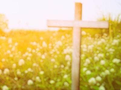 cross in field