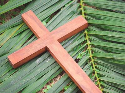 6 things you didn t know about palm sunday facts about for Prayer palm plant