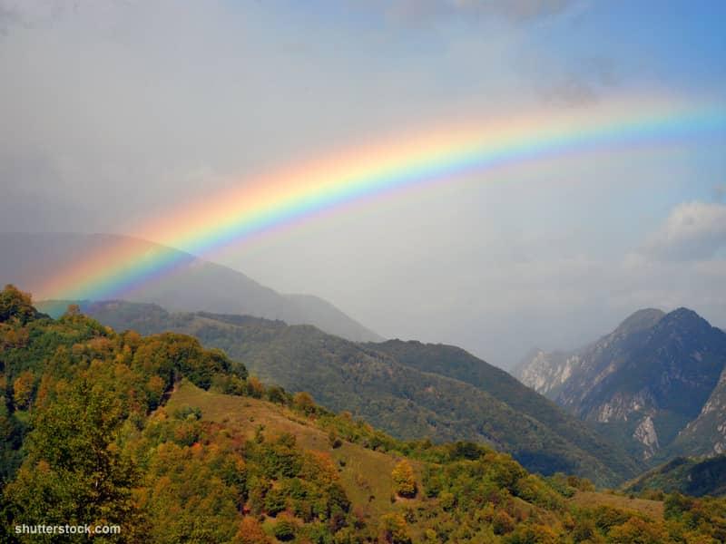 rainbow mountains trees