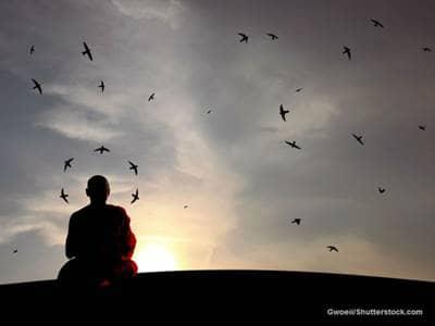 Buddha Monk Nature Birds