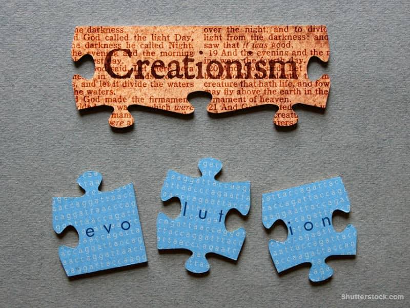 creation, evolution, debate