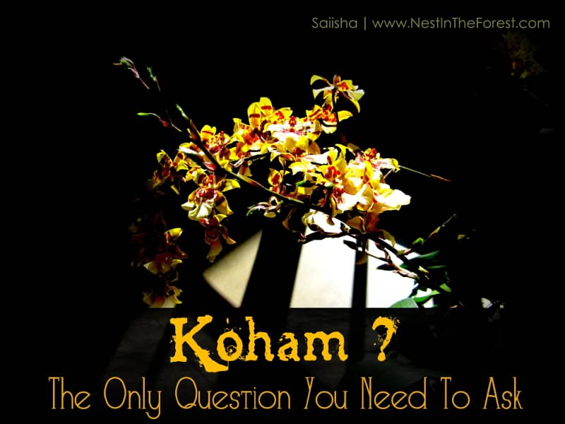 Koham