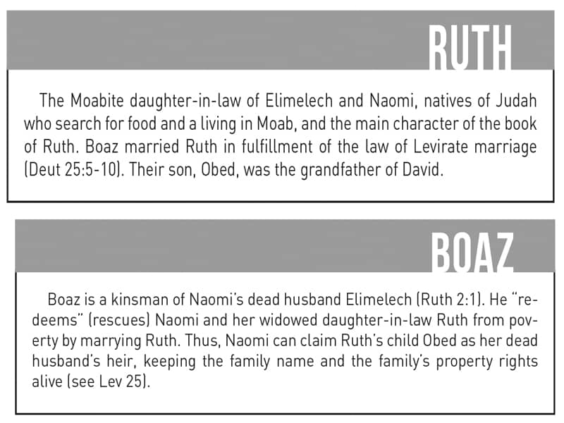 Ruth and Boaz, shocking Bible scenes, crazy stories in the Bible, Step Stone Bible