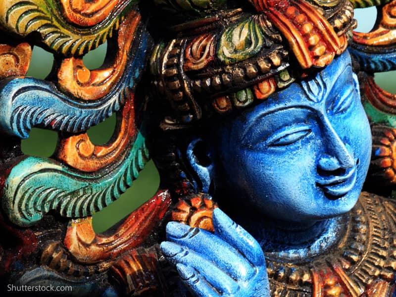 Many roles of Lord Krishna