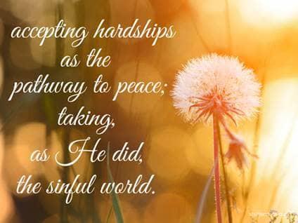 dandilion flower serenity prayer hardships