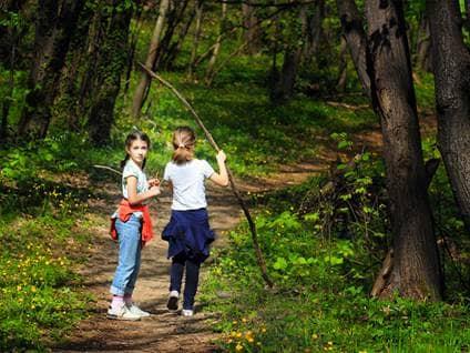 Kids exploring woods