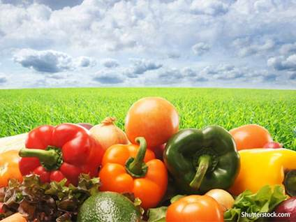 food veggies