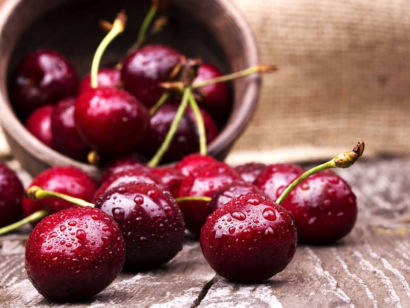 5 Reasons To Love Cherries L Health Benefits Of Cherries L Are