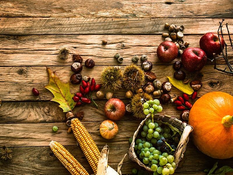 fall pumpkin food
