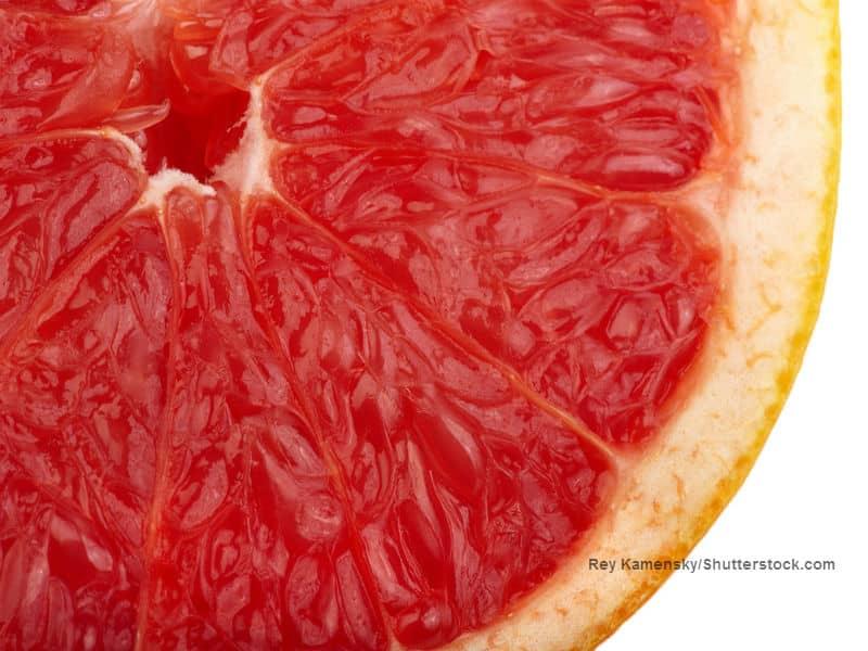 Grape Fruit Rey Kamensky