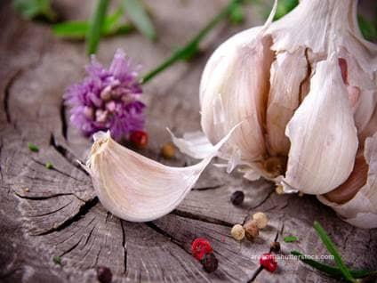 Kesu Garlic 1