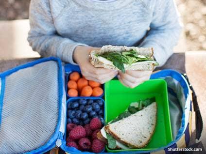 health-child-lunch-sandwich