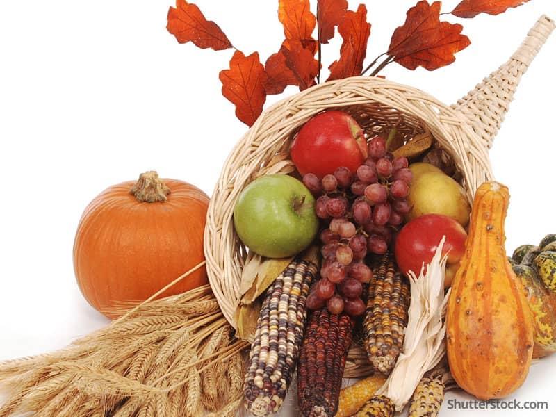 thanksgiving-fall-cornucopia