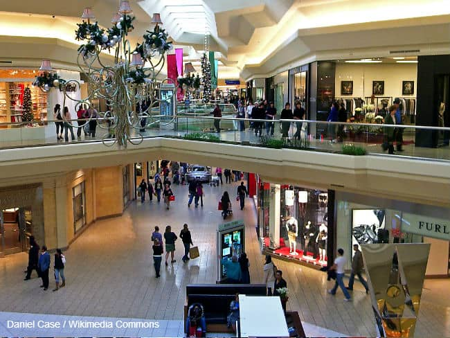 Black Friday Shopping in Mall