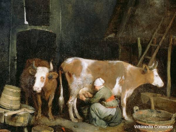 Maids Milking