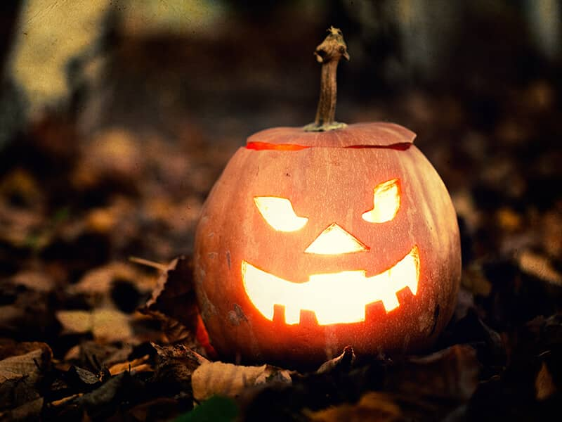 the story of halloween began over 2000 years ago