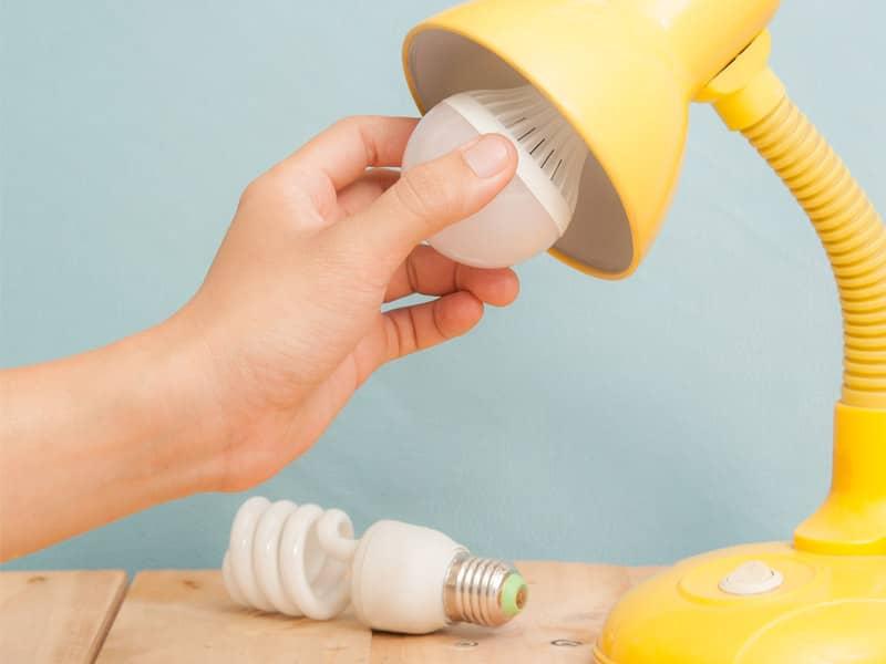 LED bulb in lamp