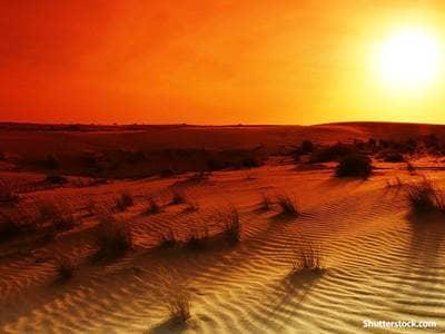 nature desert sunrise