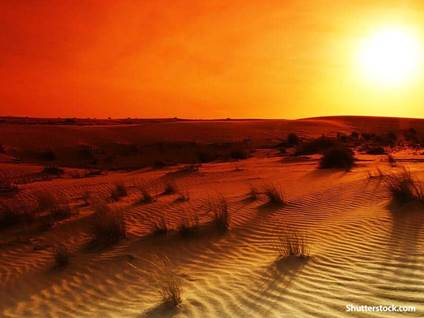 nature desert sunrise