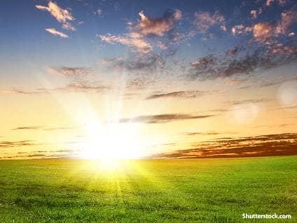 nature field sunrise