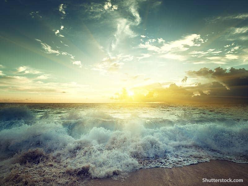 nature sea beach