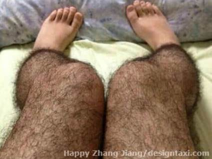 bizarre, inventions, hairy legs