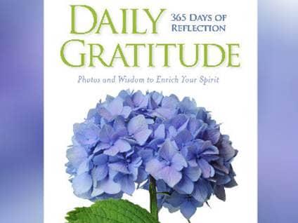 Daily Gratitude Cover