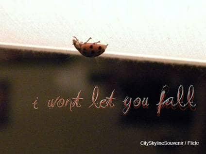 Lady Bug Falling