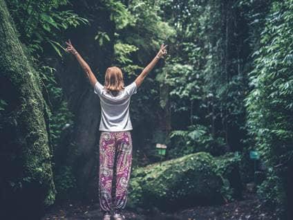 woods praise