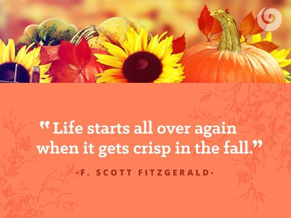 Fall Quotes Custom 48 Quotes To Get You Excited About Fall Autumn Quotes Fall Quotes