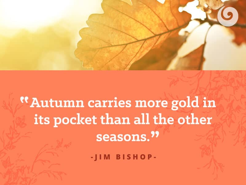 Fall Is A Favorite Time Of Year For Many People. Each Season Has Its Perks,  But None Quite Like Fall. We ...