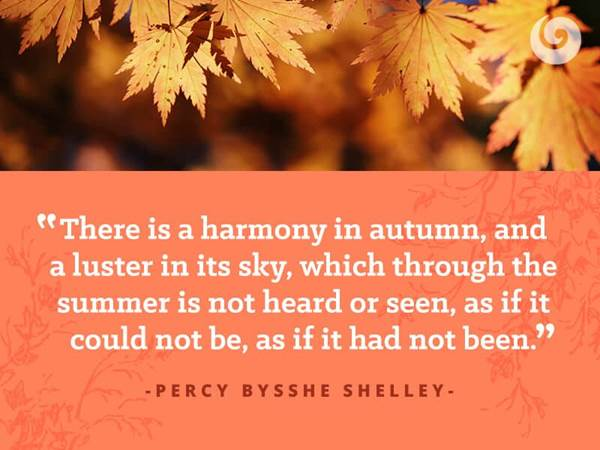 6 Quotes to Get You Excited About Fall | Autumn Quotes ...