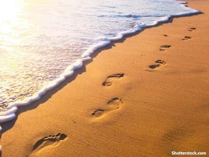 nature footprints sand