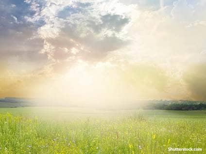 nature sun rays